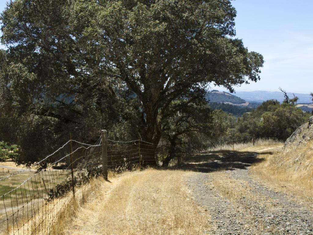 Rill Landscape10-crop