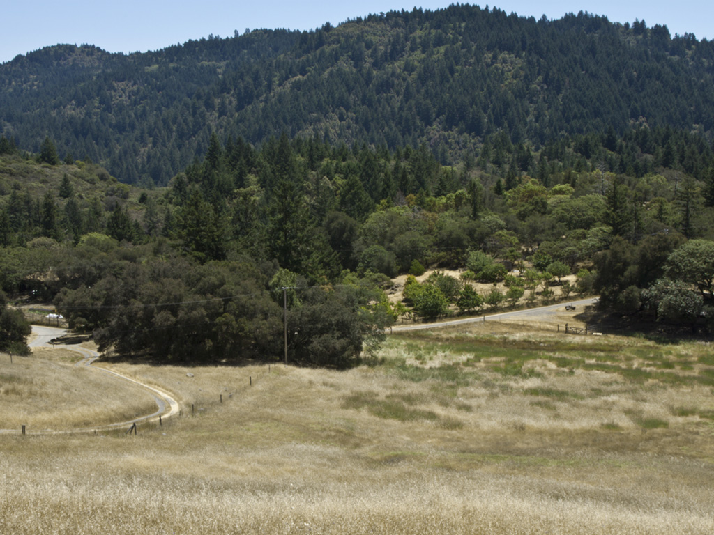 Rill Landscape11-crop