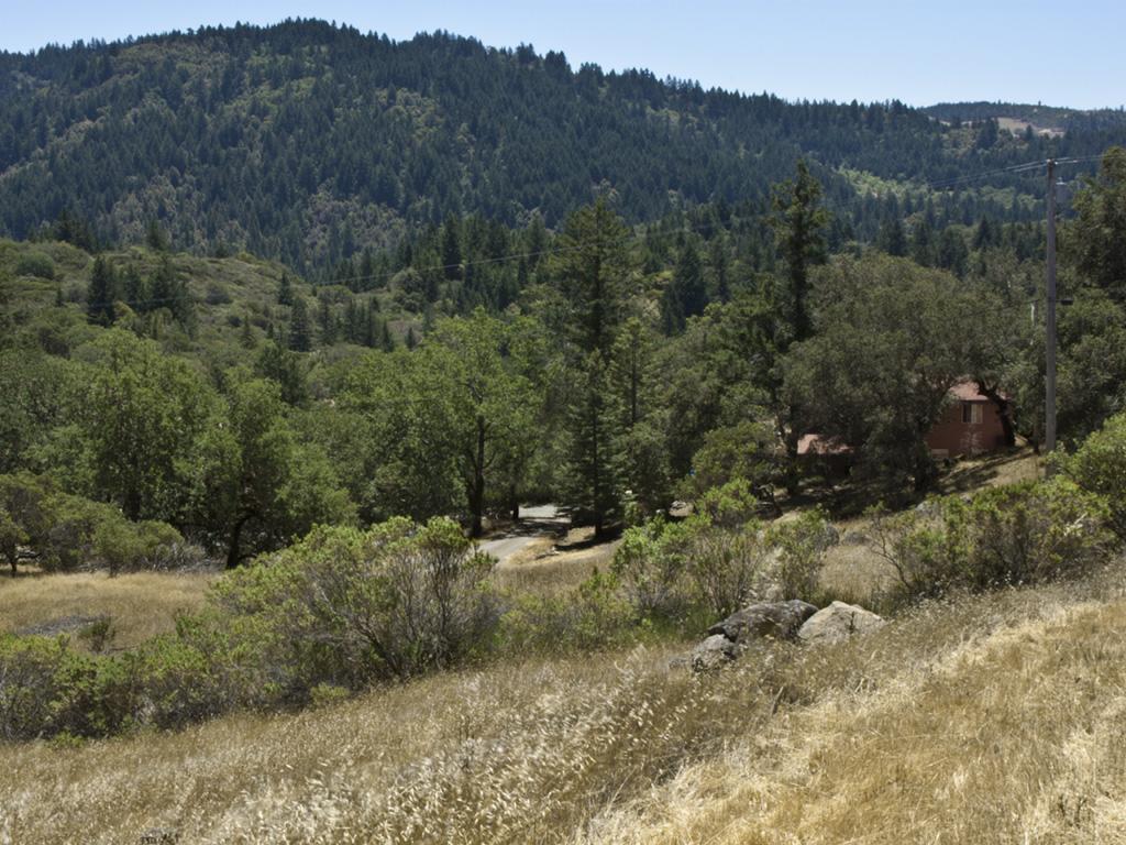 Rill Landscape12-crop