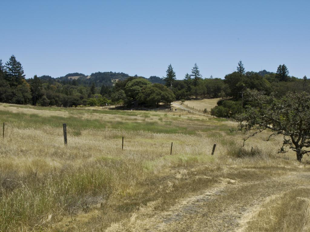 Rill Landscape9-crop